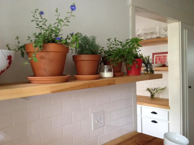 Grape Did It - kitchen reno plant shelf