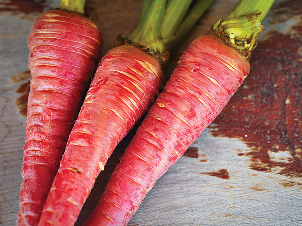 GDI - rare seeds carrots