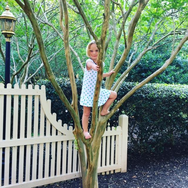 GDI - June tree