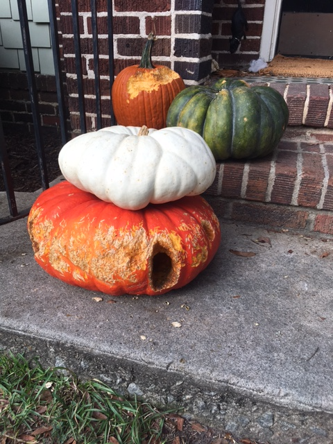 Holey pumpkins