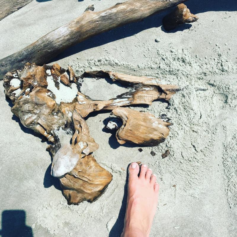 Driftwood_Folly_Beach
